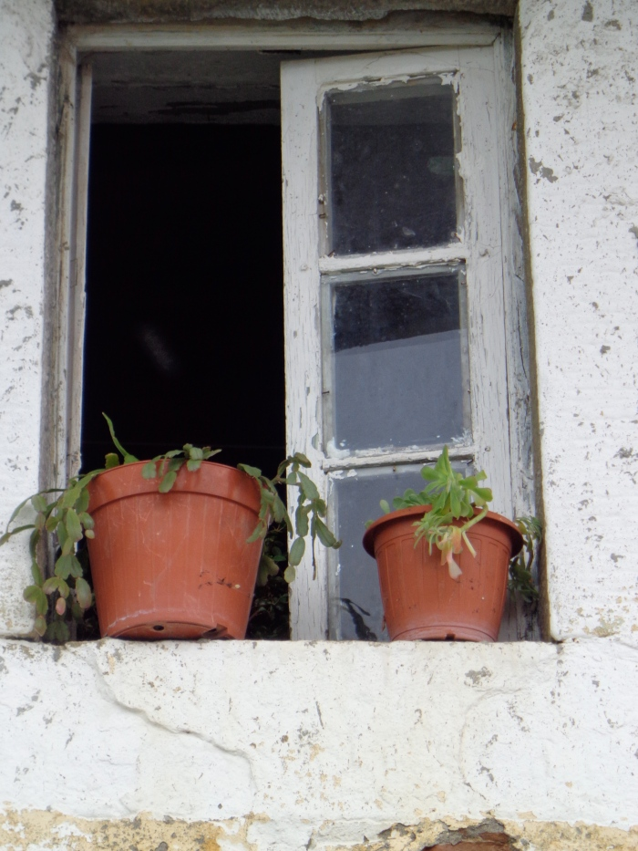 Window bagni di Lucca