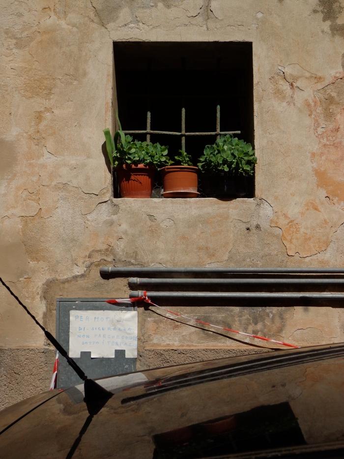 box window pots